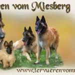 banner_tervueren