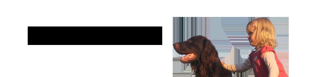Hundeschule & Hundepension